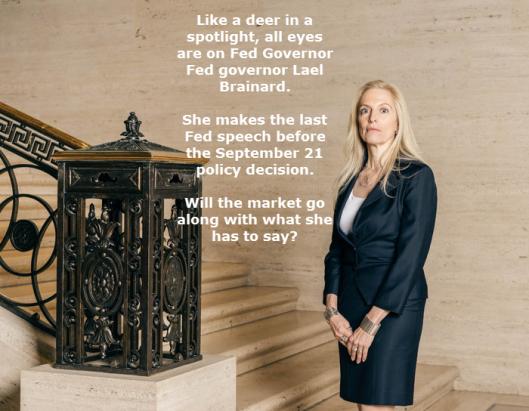 fed-governor-brainard